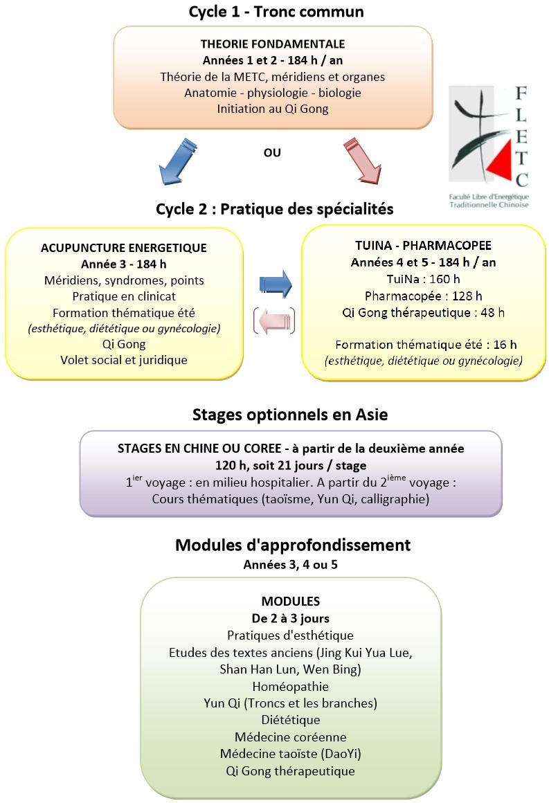 formation-energetique-chinoise