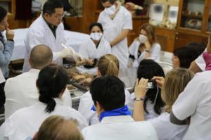 cours d'anatomie lors d'un stage en médecine traditionnelle chinoise
